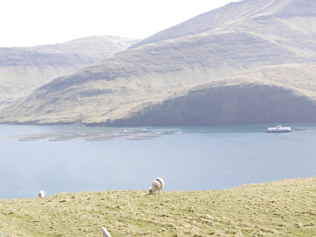 Faroese fishing ©tmf dialogue marketing